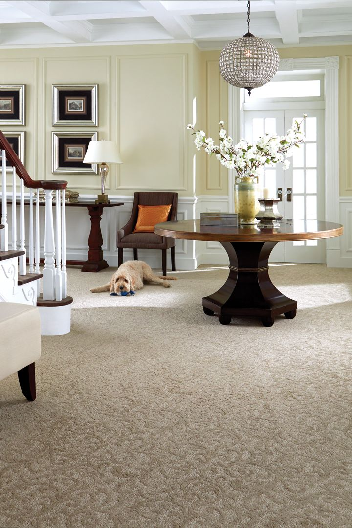 Value Carpets And Flooring Ltd