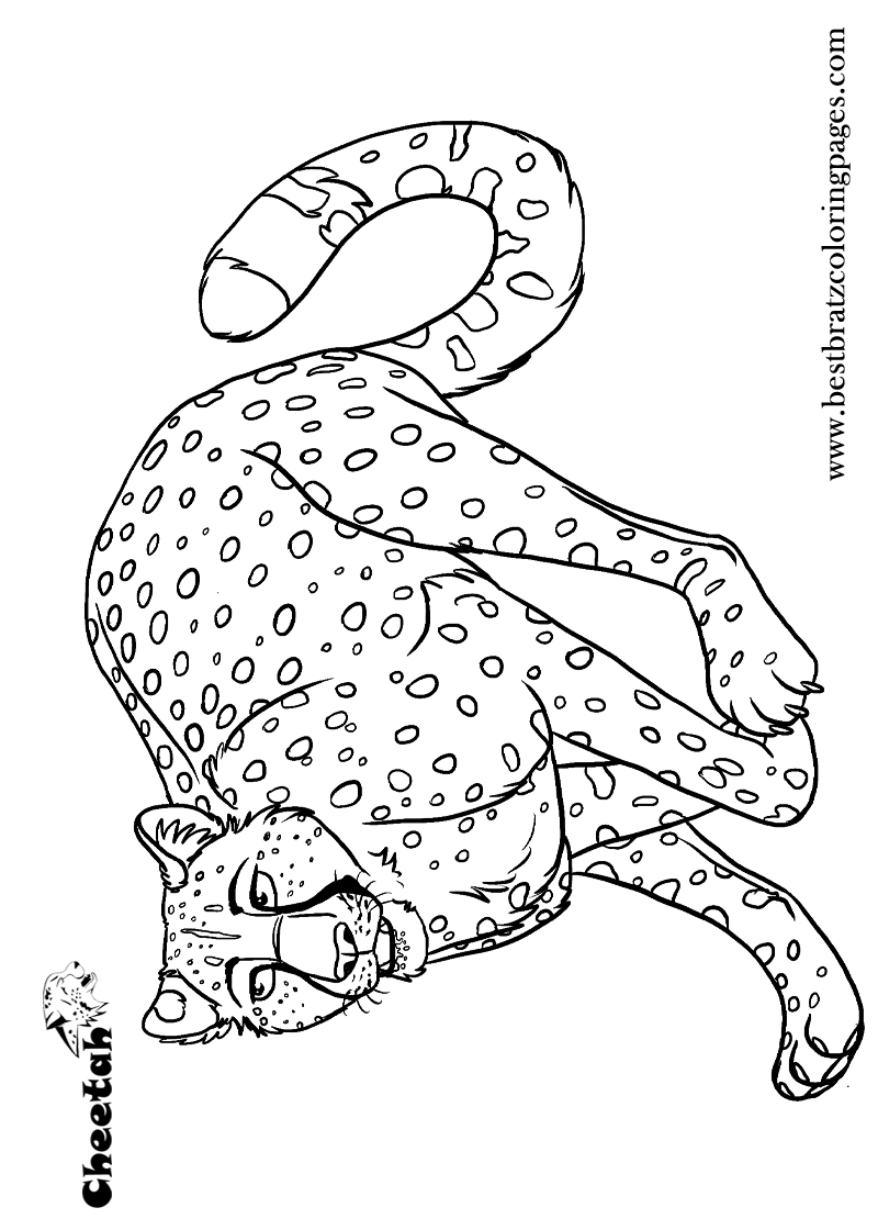 Printable Cheetah Coloring Pages For Kids Bratz Coloring