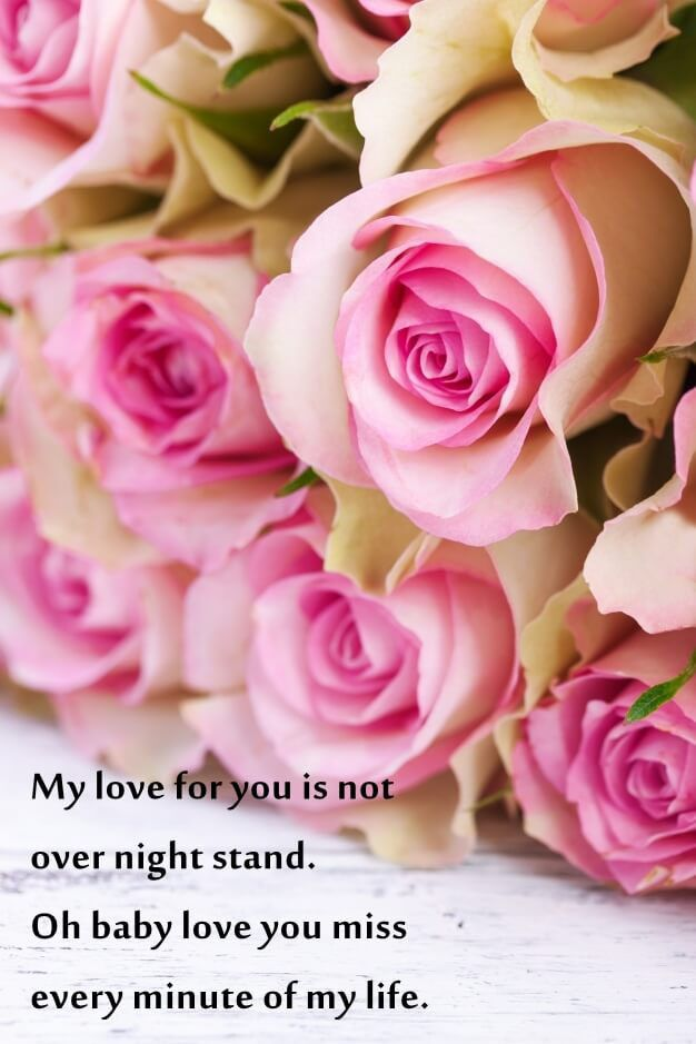 Rose Day Messages and Wishes With Images | 2017 quotes, Rose and ...