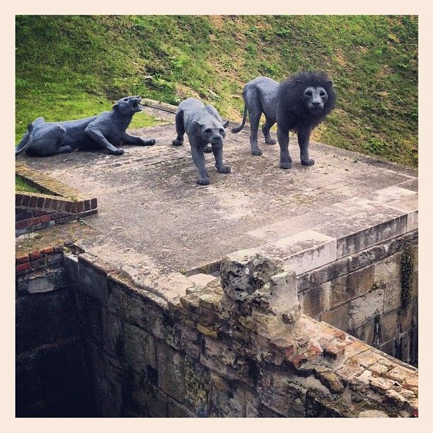 Wire lions guarding the Tower of London, by @Jetlagged Typist // Rachel Carr