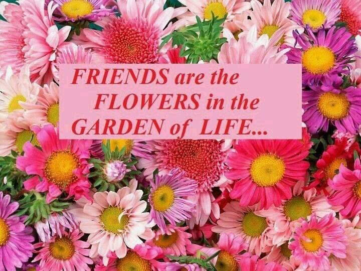 http://plants.hobbiesandcrafts.net