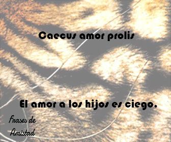 Frases En Latín De Amor Sollefe Tattoo