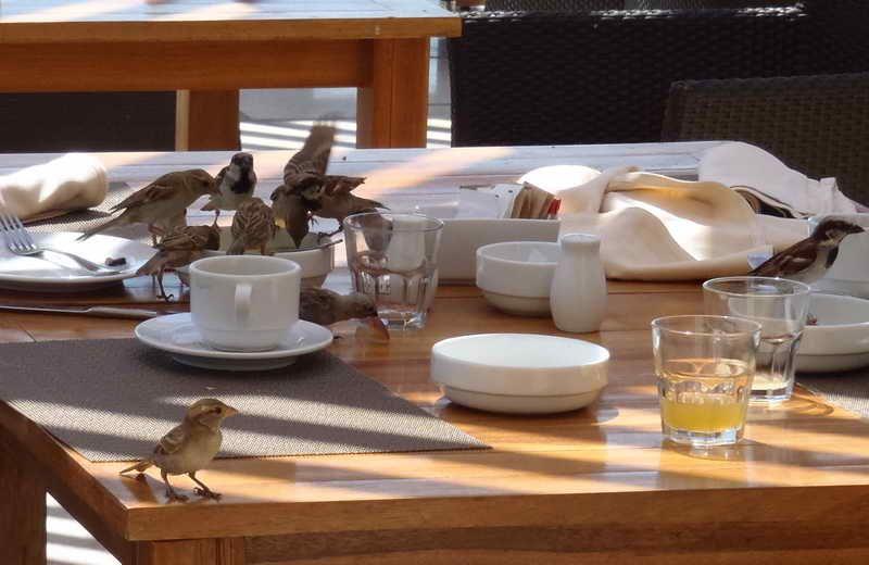 fuzje i przejęcia - w tym przypadku stołu :)  A oto prawdziwe fuzje i przejęcia - www.grupatrinity.pl/uslugi/finanse/fuzje-i-przejecia