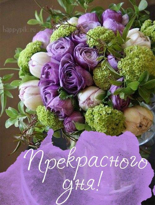 Dobroe Utro Krasivye Kartinki V 2020 G Fioletovye Cvetochnye