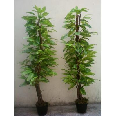 Arboles y plantas artificiales photo 6 patrones - Enredaderas de interior ...