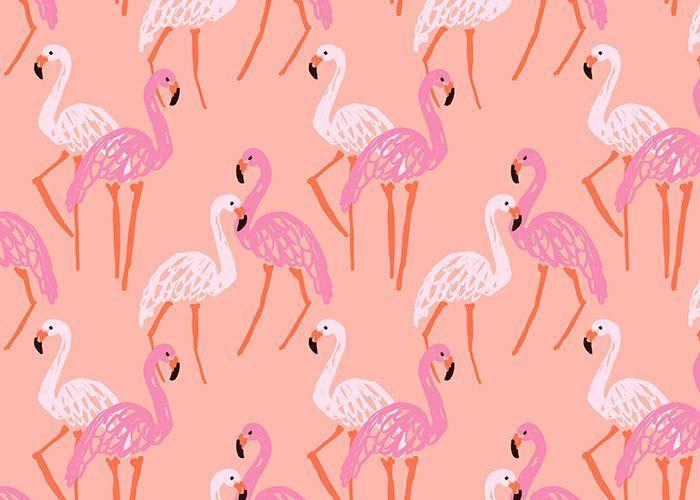 Whores! hot Pink flamingos asshole scene