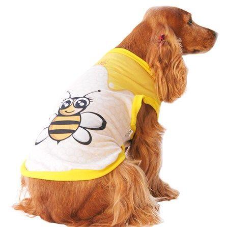 Camiseta Coleção Verão Abelinha Mascote - MeuAmigoPet.com.br #petshop #cachorro #cão #meuamigopet