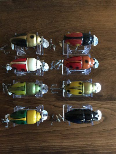 CCB Beetles
