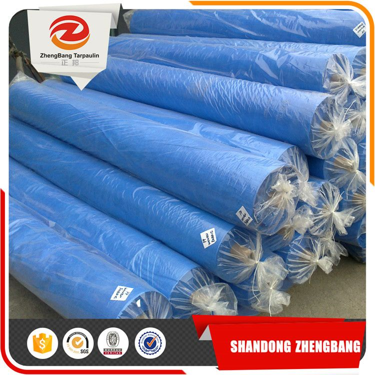 Plastic Sheet Blue PE tarpaulin Roll | PE tarpaulin China | Plastic ...