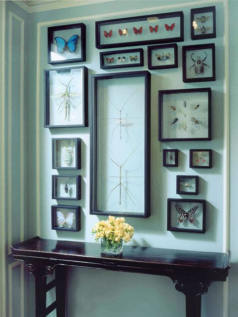 Decorating and design tips from tom stringer decorating decorating and design tips from tom stringer traditional home style blueprint sept finds features framed butterflies from ash blue store malvernweather Images
