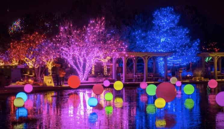 9001837f11897a2a07707e1c6277f14f - Blossoms Of Light Denver Botanic Gardens December 10