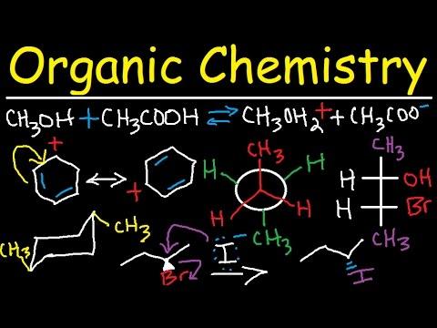 basis of organic chemistry Google Search Organic