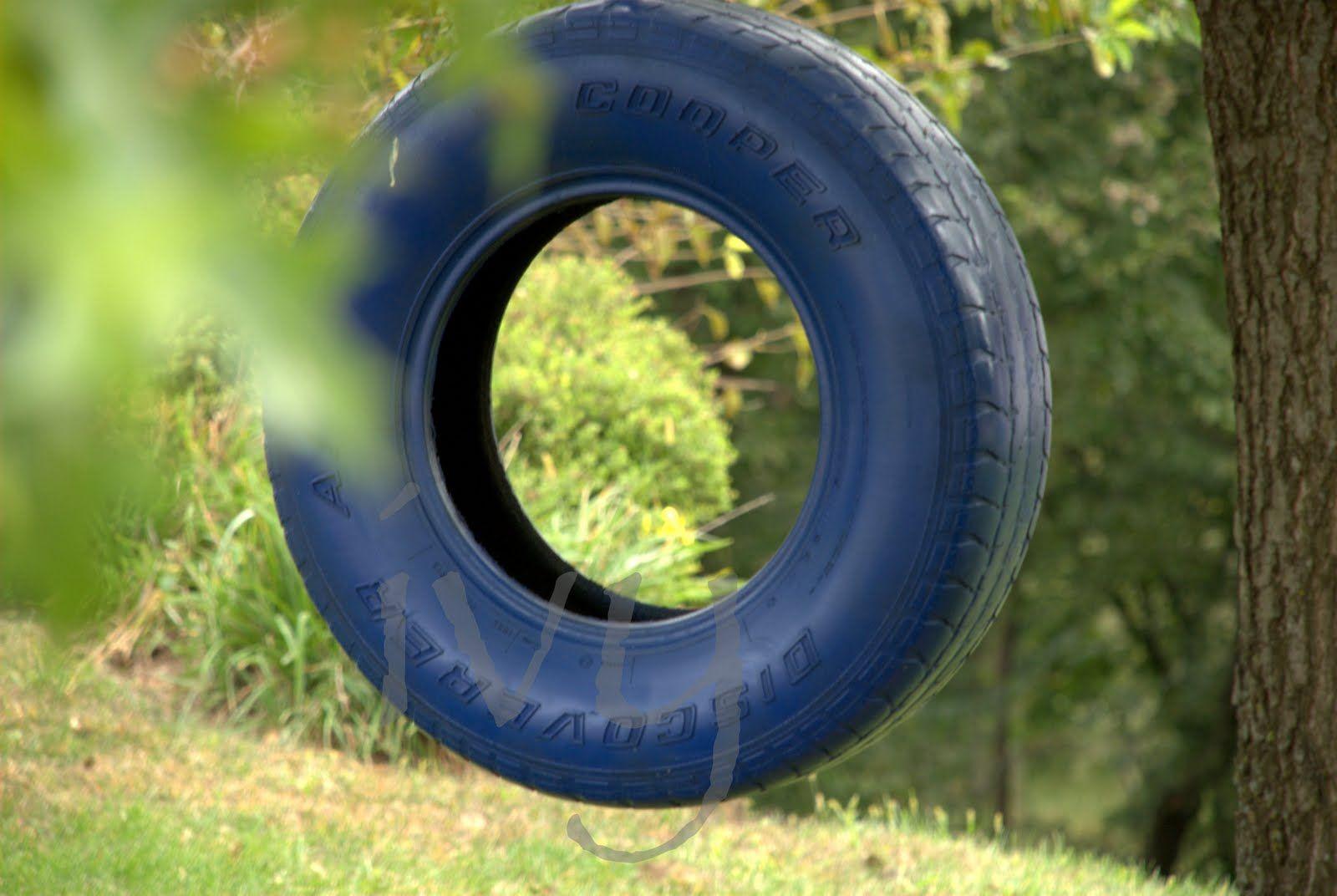 Tire swing Tire swing, Lets do it, Outdoor
