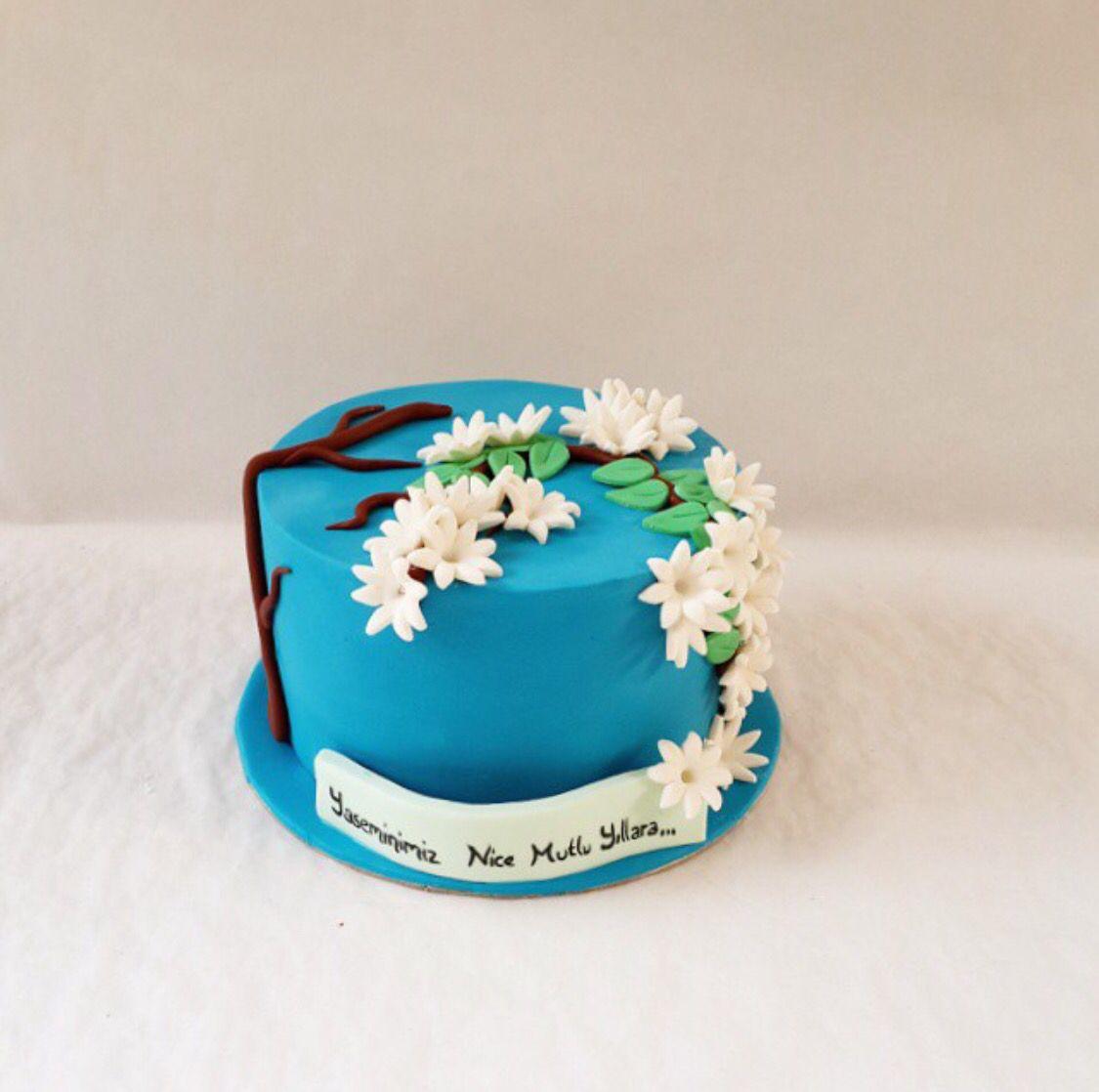 Jasmine jasmin cake blue birthday cake chocolate fondant cake