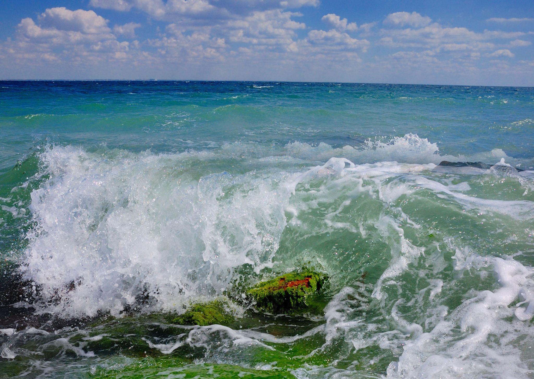 общие картинки прибоя волн лидирует