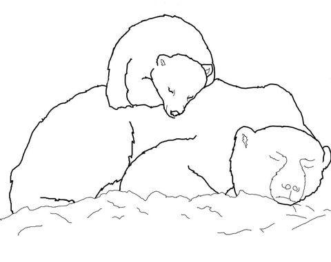 Osito Polar Durmiendo Sobre Su Mamá Dibujo Para Colorear Animales