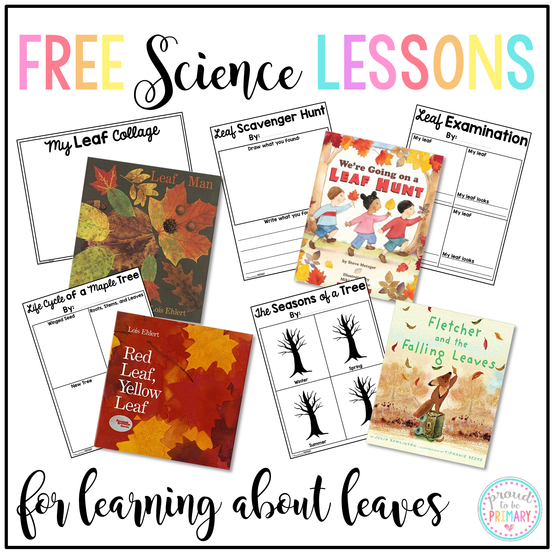 Perfect Leaf Activity: Fall Classroom Excitement ...