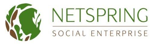 Netspring logo