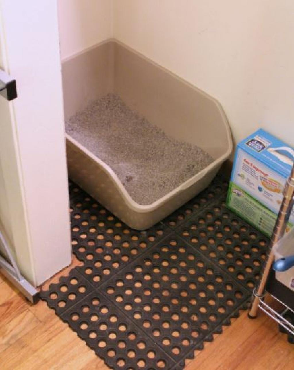 comment garder votre maison propre avec des animaux de compagnie 10 trucs essayer trucs et. Black Bedroom Furniture Sets. Home Design Ideas