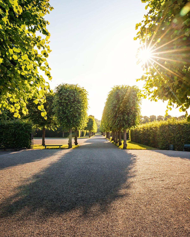 Herrenhauser Garten In 2020 Hannover Garten Herrin
