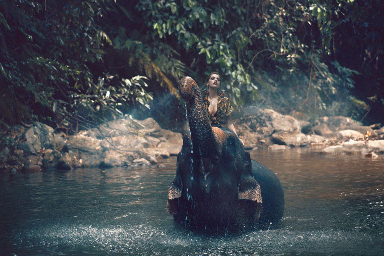 POP Magazine – #23 - Elephant | Rosco Production