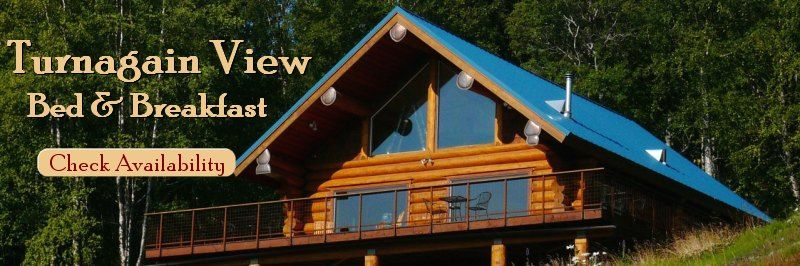 Come stay at Turnagain View Bed and Breakfast just south of Anchorage, Alaska