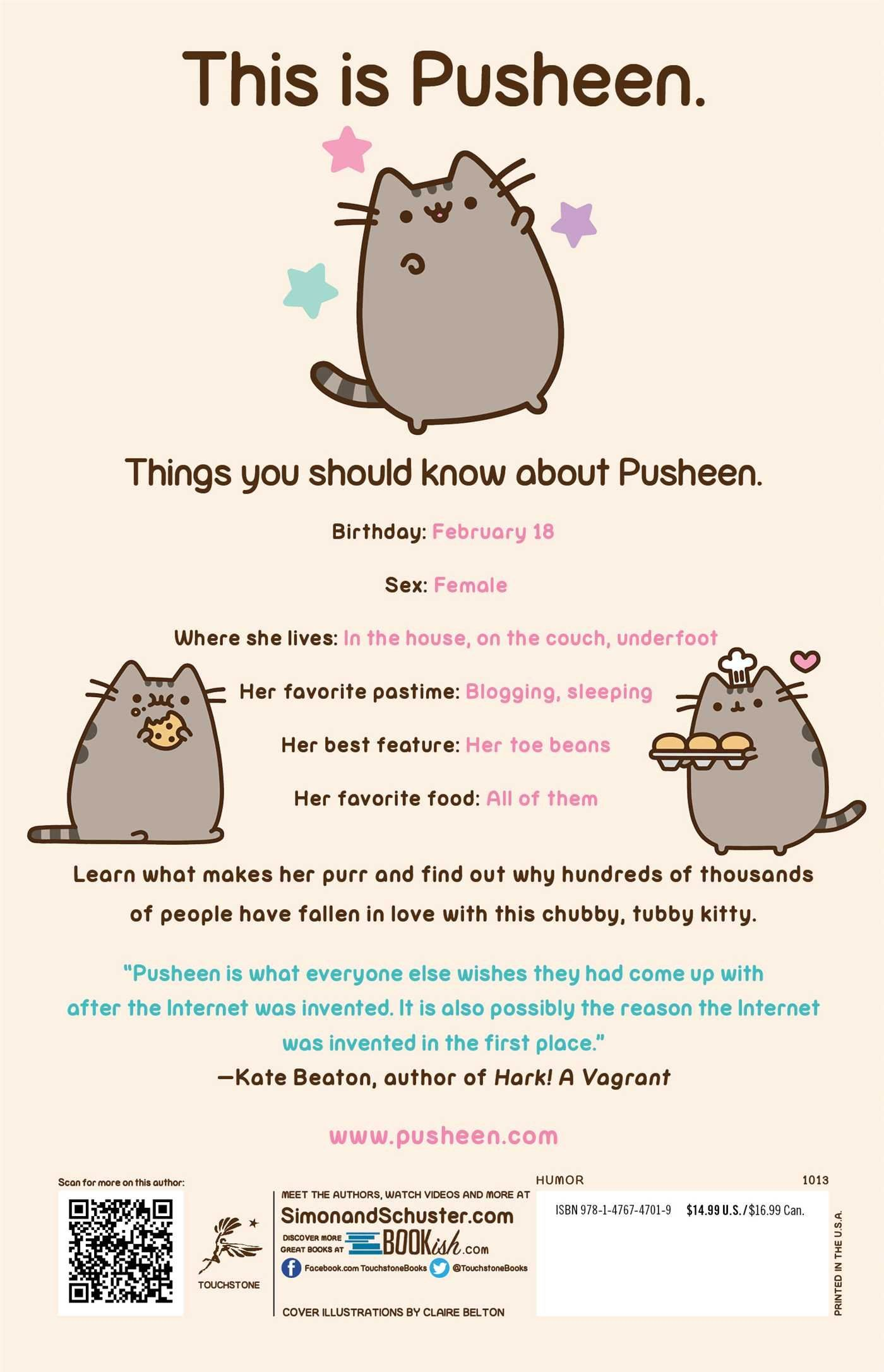 Nice I Am Pusheen The Cat: Claire Belton: 9781476747019: Amazon.com: Books