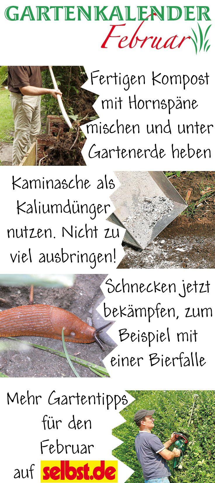 Gartenarbeit februar  Gartenkalender: Februar | Gartenkalender, Gärten und Gartenarbeit