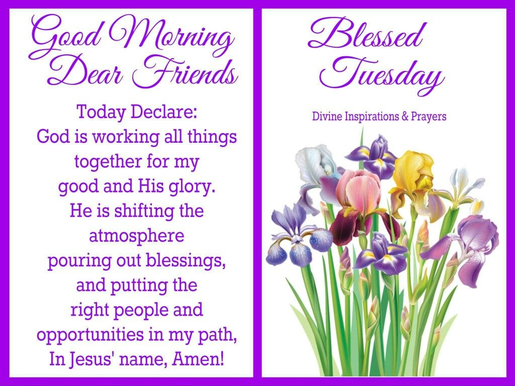 blessings for the week pinterest blessings good morning dear and friends blessed tuesday good morning tuesday tuesday kristyandbryce Choice Image