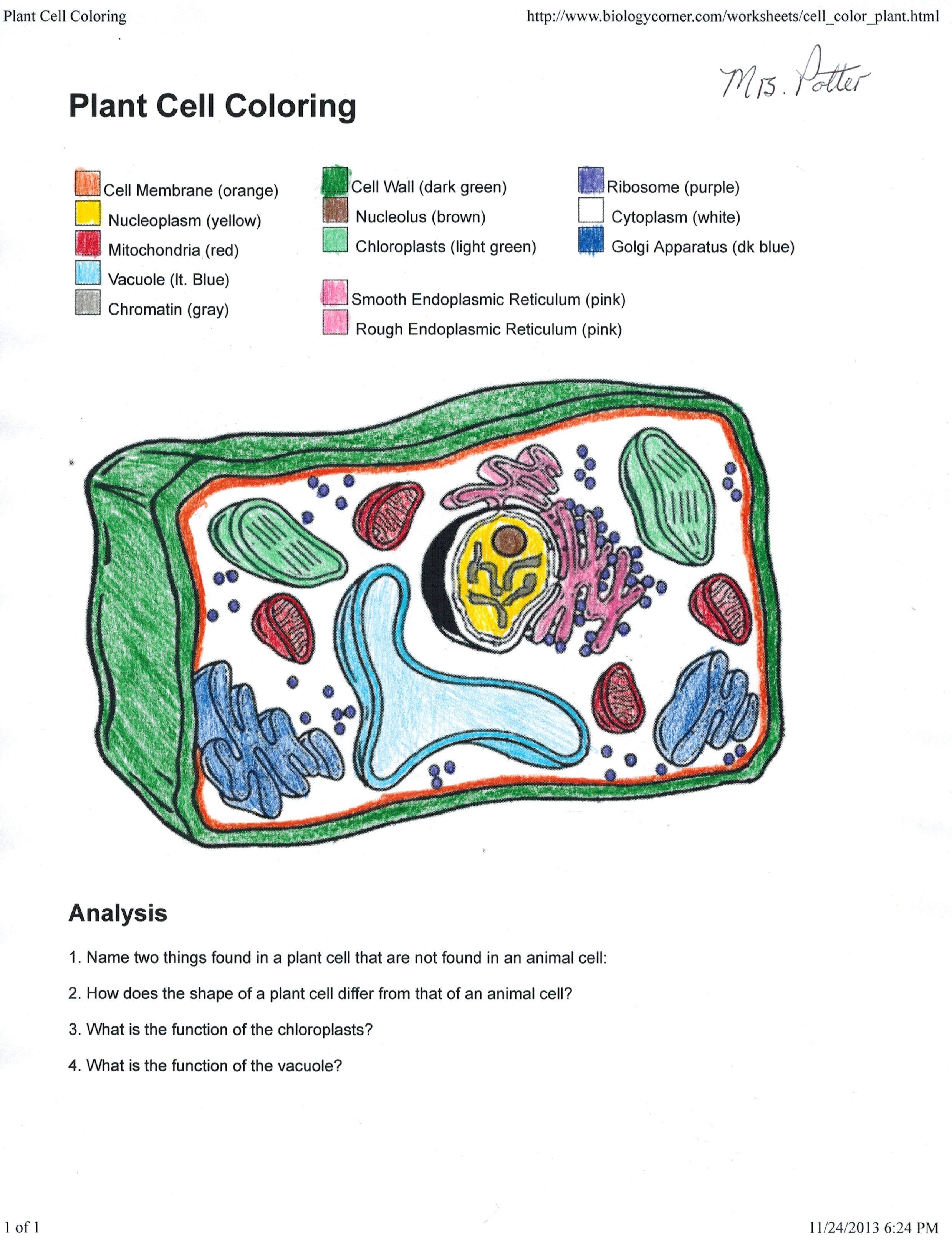 Animal Cell Coloring With Name