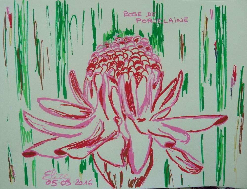 Rose de porcelaine fleur tropicale précieuse. Dessin d'Elize http://www.pigmentropie.fr/
