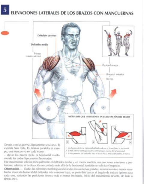 ejercicios para hacer hombros con mancuernas