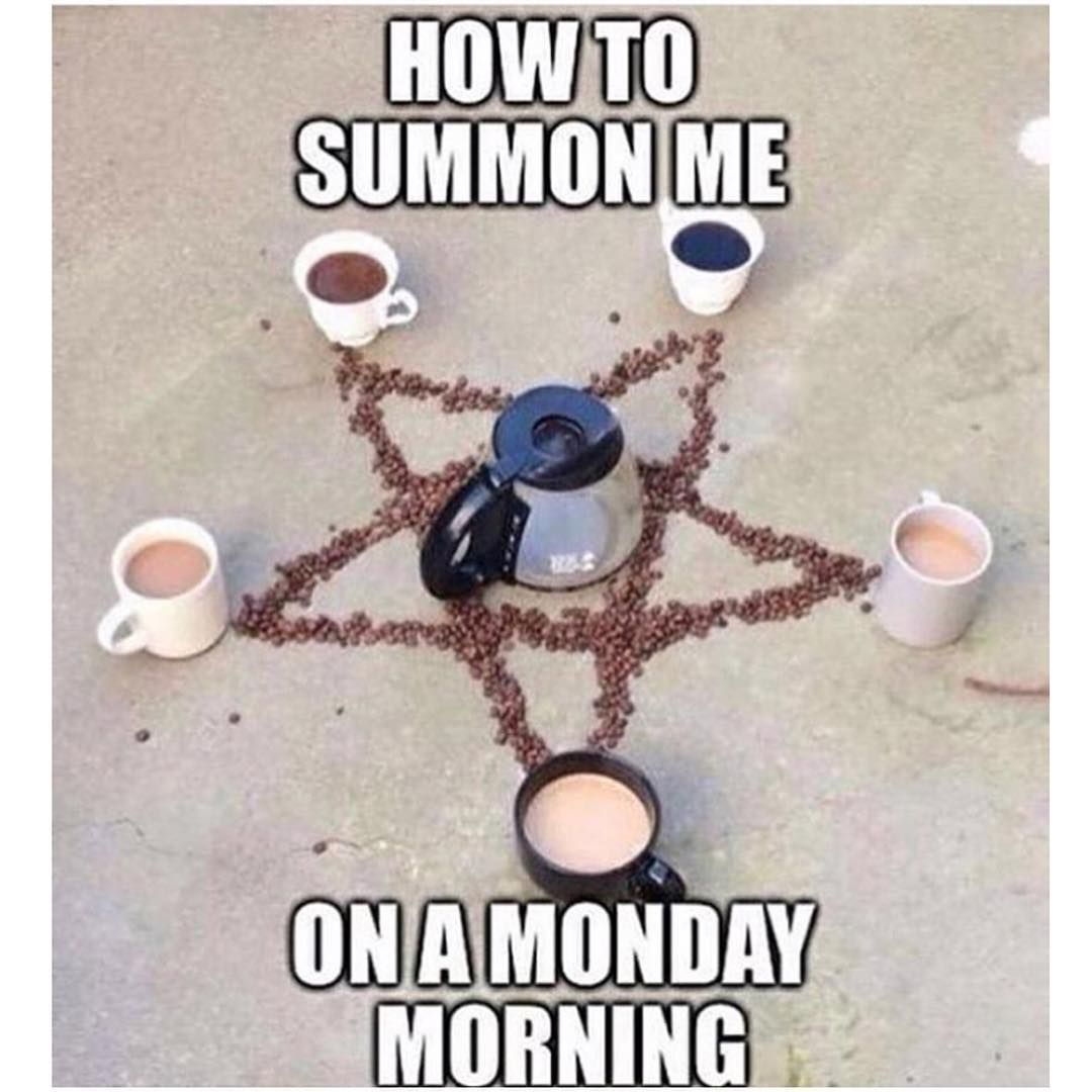 Gorgeous Good Happy Good Happy Good Morning Ny Pinterest Happy Monday Meme Dog Happy Monday Meme Coffee bark post Happy Monday Meme