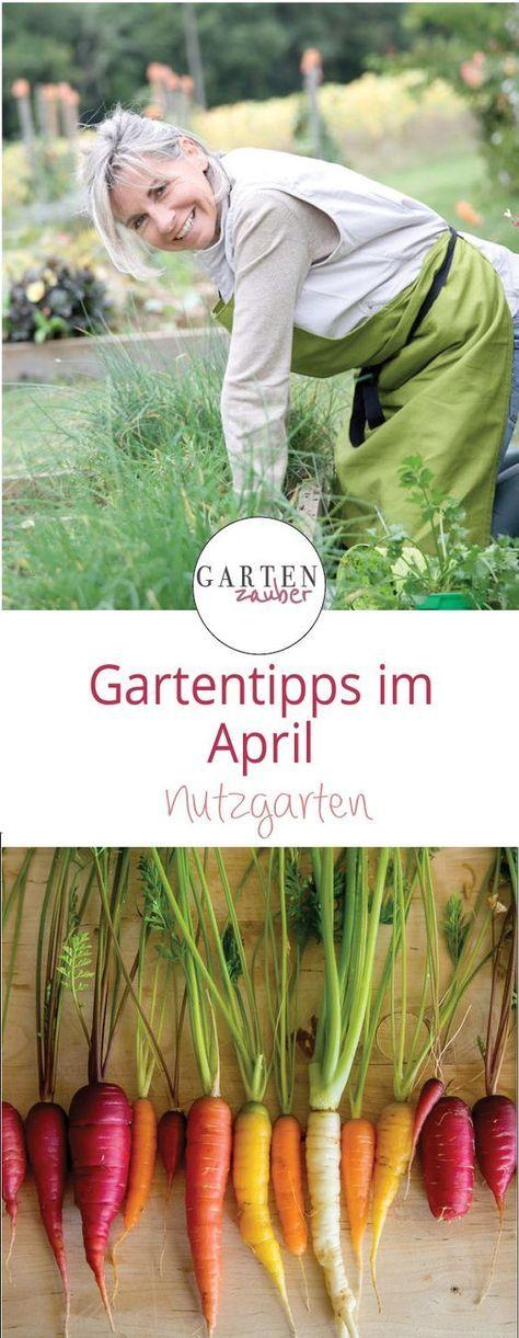 Gartentipps April