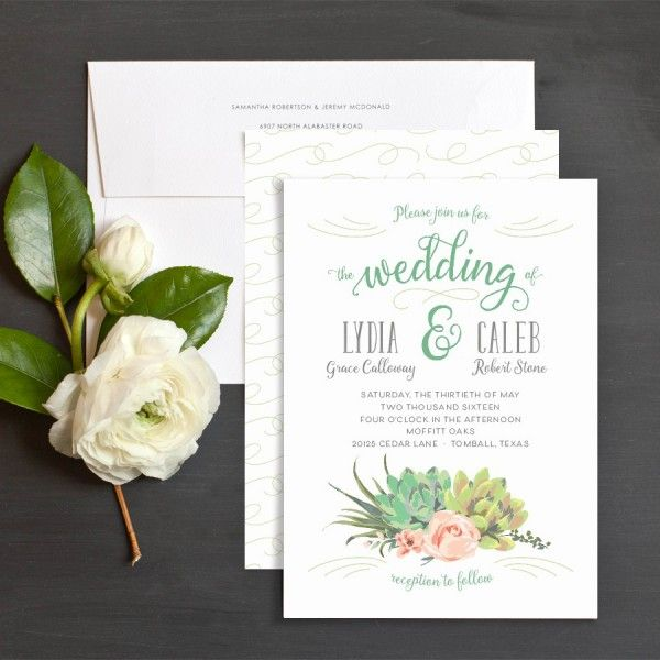 Romantic succulents wedding invitations by emily crawford elli