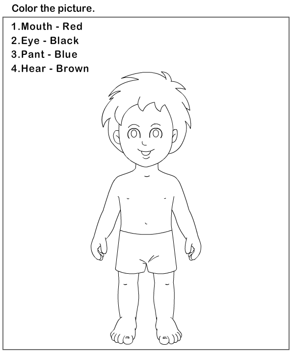 Worksheets Body Preschool Preschool Worksheets Kindergarten Worksheets