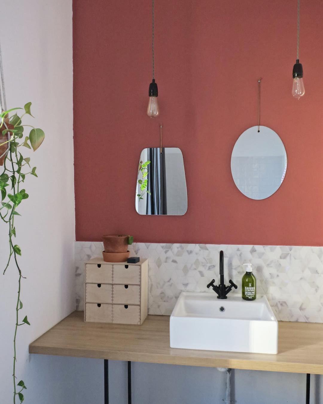 salle de bain avec plantes et couleur terracota au mur  Idée