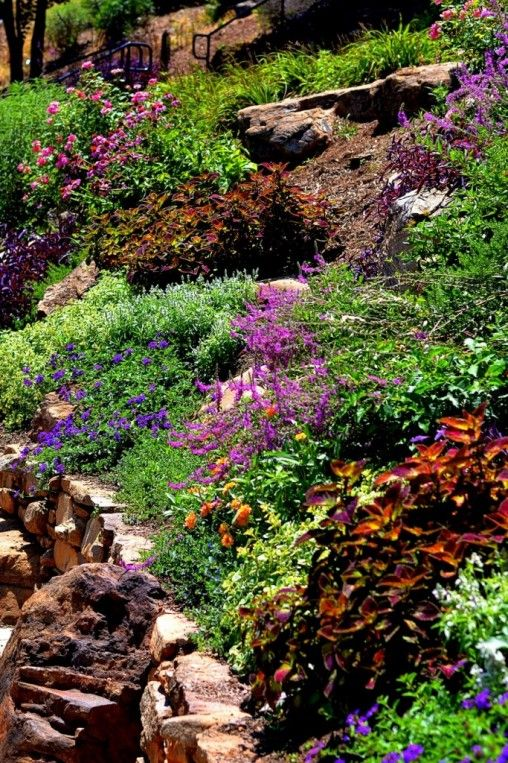 Xeriscaping: Gardening for Water Conservation | Landscape ...