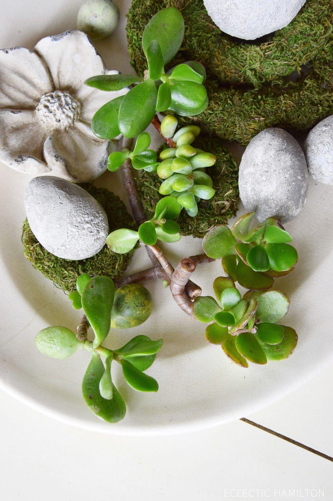 Kreativ mit Sukkulenten ohne Erde | Natürlich dekorieren, Konsole ...