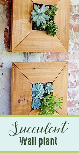 Succulent Wall Planter Kit #affiliate #Rustic #home #decor #Living ...