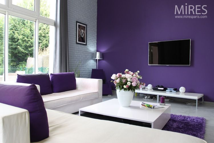 Mod le decoration de salon gris et mauve salons salon for Deco salon violet et gris