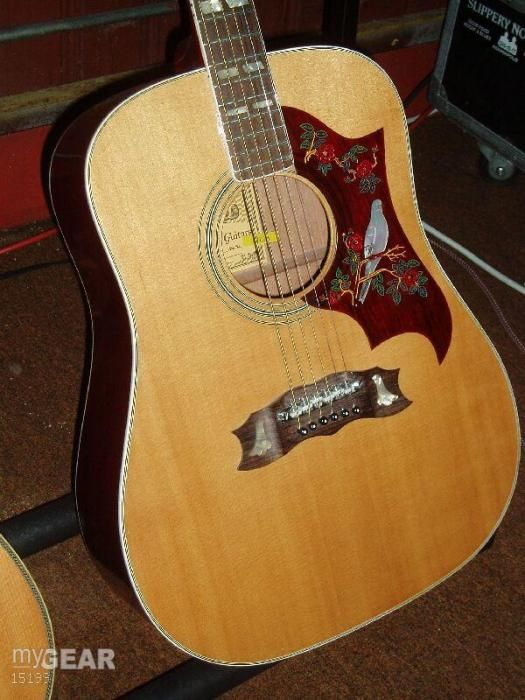 Alvarez Dove Guitar With Mother Of Pearl Inlay The Lawsuit Guitar Guitar Music Gear Guitar Rack