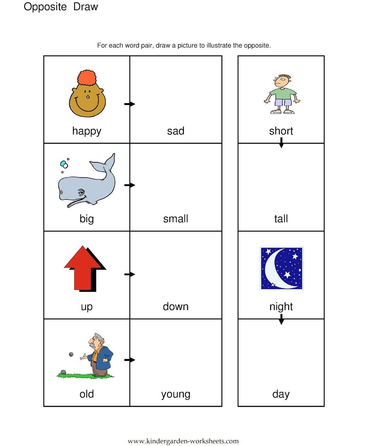Opposites Worksheet Kindergarten Sense Organs Worksheet