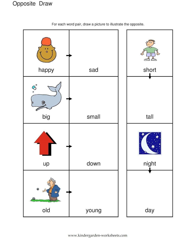 Opposites Worksheet Kindergarten Sense Organs Worksheet