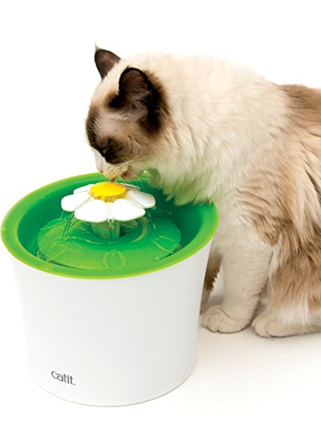 Catit Flower Drinking Water Fountain. Great for encouraging your cat to drink. https://www.amazon.com/gp/product/B0146QXOB0/ref=as_li_tl?ie=UTF8&camp=1789&creative=9325&creativeASIN=B0146QXOB0&linkCode=as2&tag=pincat17-20&linkId=80e67c96dd0b9cde3aee6314cd3c53f0