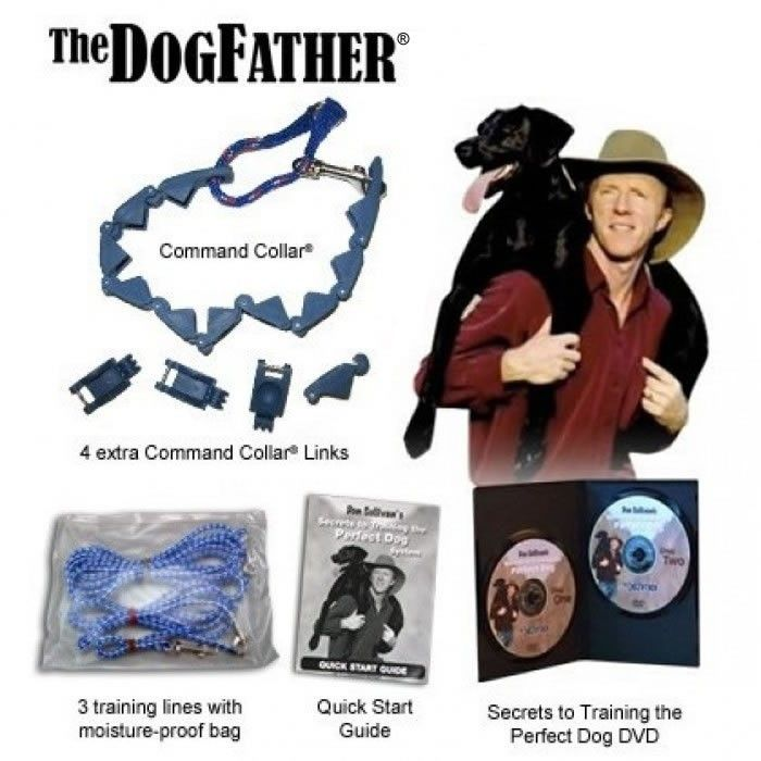 the perfect dog training system