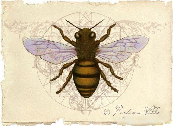 Honey Bee Original Art Print
