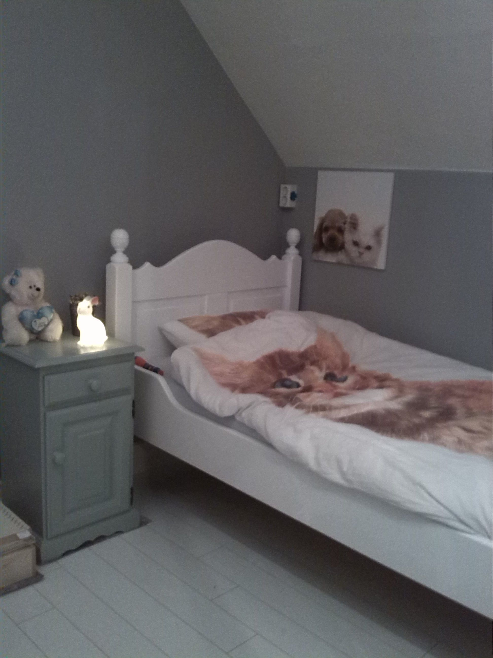 Painting The Bedroom Slaapkamer Van Mijn Zoontje Muren Painting The Past Dutch Grey