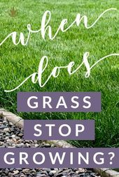 Wann hört Gras auf zu wachsen?  Heimat für die Ernte # Gras # Wachsen # Ernte #ho #design #model #dress #shoes #heels #styles #outfit #purse #jewelry #shopping #glam #love  #amazing  #style  #swag