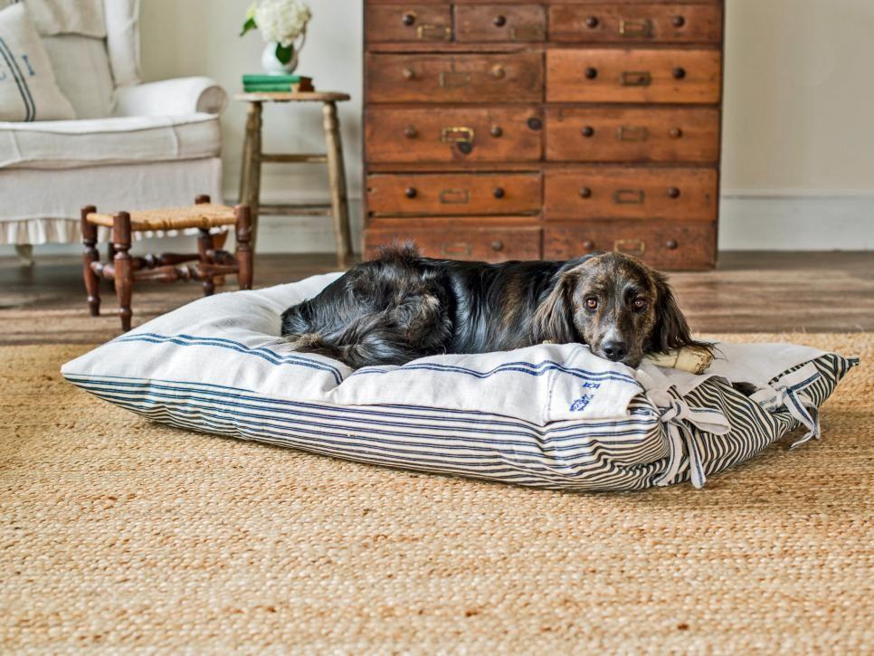 Unique Pet Bed Ottoman Inspiration